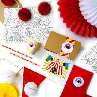 The Conscious Party Box: Circus Party Box