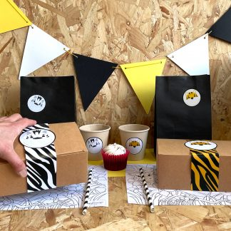 The Conscious Party Box: Jungle Mini Party Box