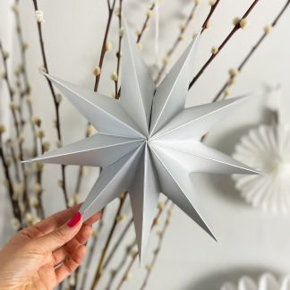 The Conscious Party Box: Silver paper star