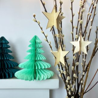 The Conscious Party Box: wooden star decorations